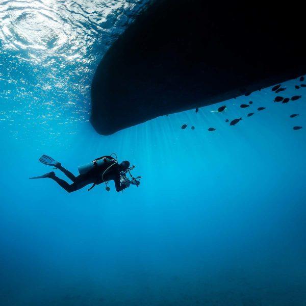Dykker under vann og under båt med fisker
