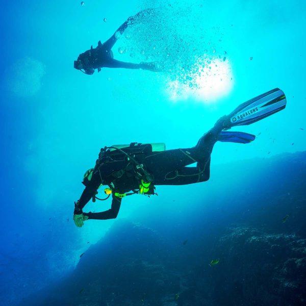To dykkere under vann, bilde tatt under dykkerene